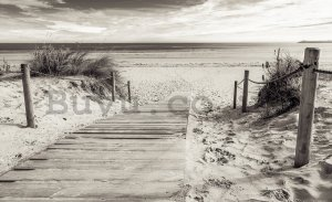 Wall mural vlies: Beach (black and white) - 104x152,5 cm