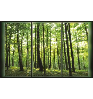 Wall Mural: Forest (View from the window) - 254x368 cm