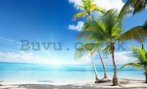 Wall mural vlies: Palms at the beach - 104x152,5 cm