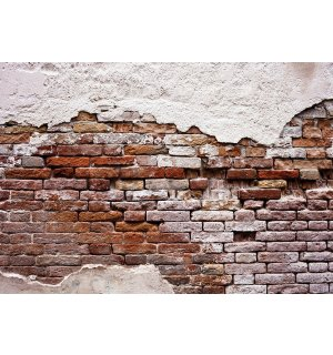 Wall Mural: Tattered Old Brick Wall - 184x254 cm