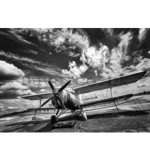 Wall Mural: Biplane (black and white) - 254x368 cm