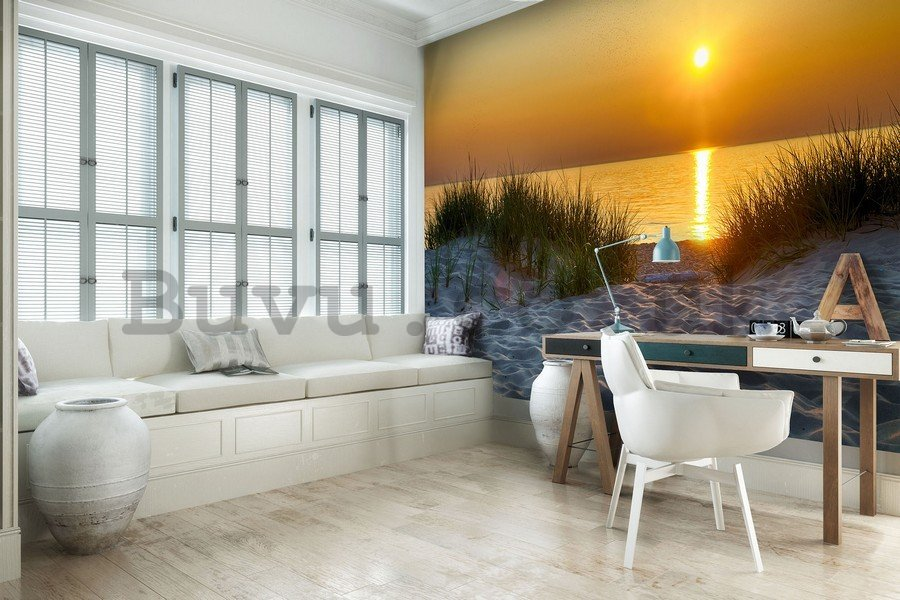 Wall Mural: Sunset at the beach (5) - 254x368 cm