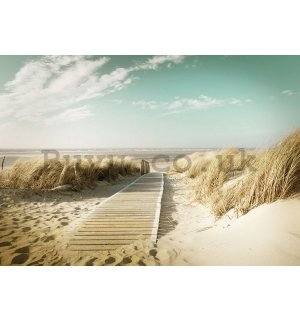Wall Mural: Way to the beach (8) - 184x254 cm