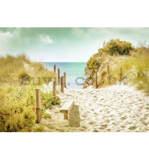 Wall Mural: Way to the beach (9) - 184x254 cm