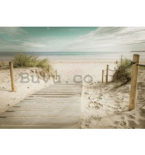 Wall Mural: Way to the beach (10) - 254x368 cm