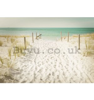 Wall Mural: Way to the beach (11) - 184x254 cm