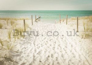 Wall Mural: Way to the beach (11) - 254x368 cm