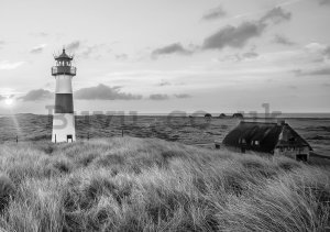 Wall Mural: Lighthouse on the coast (1) - 254x368 cm
