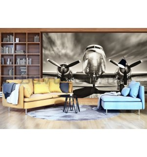 Wall Mural: Aircraft (black and white) - 254x368 cm