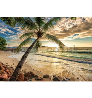 Wall Mural: Tropical Paradise (2) - 254x368 cm