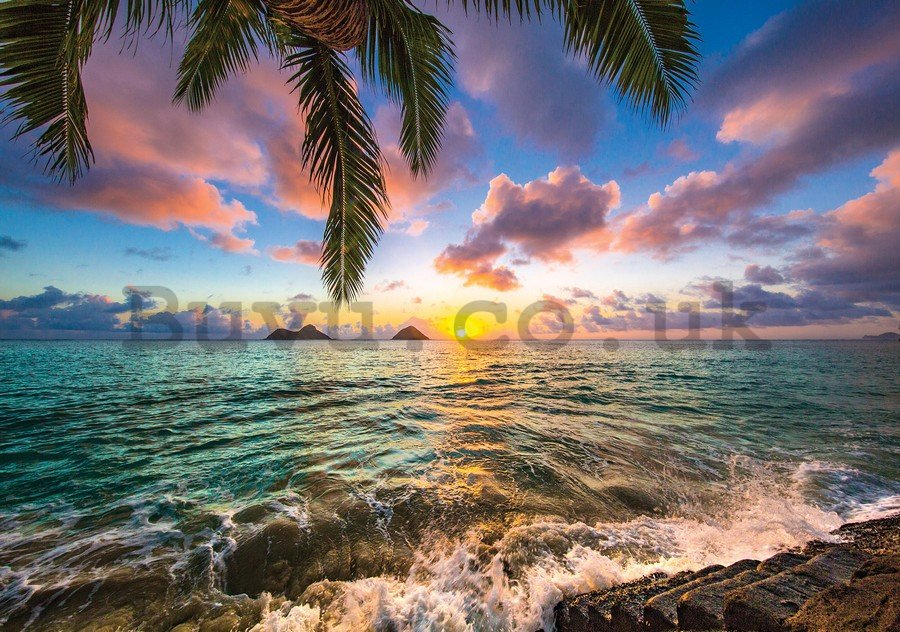 Wall Mural: Tropical Paradise (3) - 184x254 cm