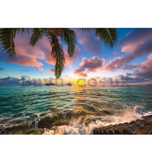 Wall Mural: Tropical Paradise (3) - 254x368 cm