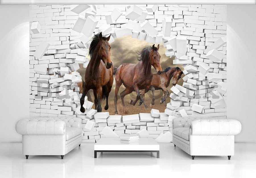 Wall mural vlies: Horses in the wall - 184x254 cm