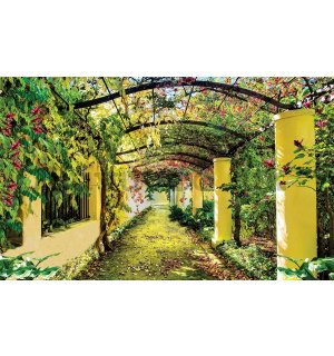 Wall mural vlies: Blooming road - 254x368 cm