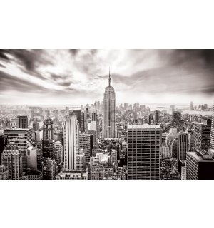 Wall mural vlies: View on New York (black and white) - 184x254 cm