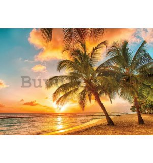 Wall mural vlies: Sunset in paradise - 184x254 cm