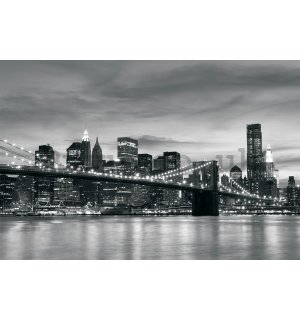 Wall mural vlies: Brooklyn Bridge - 254x368 cm
