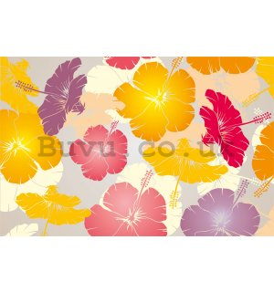Wall Mural: Colourfull flowers - 184x254 cm