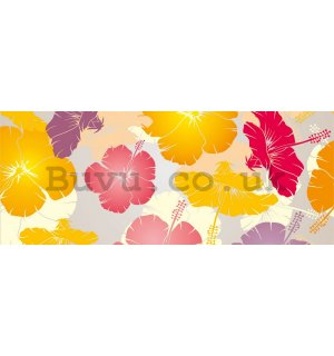 Wall Mural: Colourfull flowers - 104x250 cm