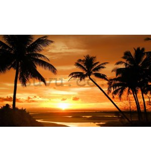 Wall Mural: Beach sunset (2) - 254x368 cm