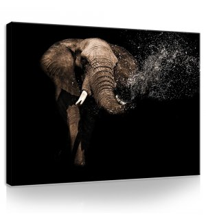 Painting on canvas: Elephant (3) - 75x100 cm