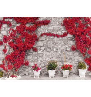 Wall mural vlies: Red floral wall - 184x254 cm