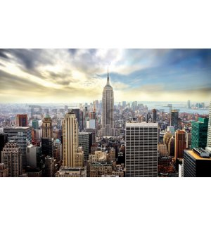 Wall mural vlies: View on New York - 254x368 cm