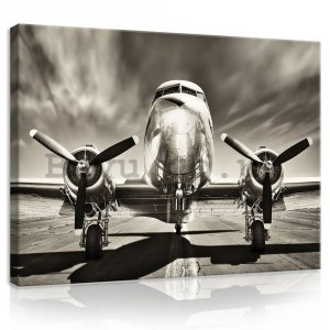 Painting on canvas: Aircraft (black and white) - 75x100 cm