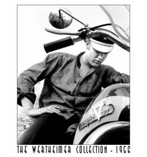 Metal sign - Wertheimer Elvis on Bike