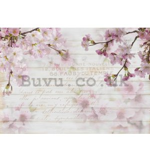 Wall mural vlies: Cherry blossoms (1) - 184x254 cm