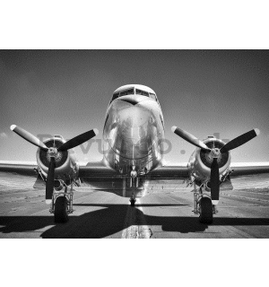Wall mural: Aircraft Black & White (1) - 254x368 cm