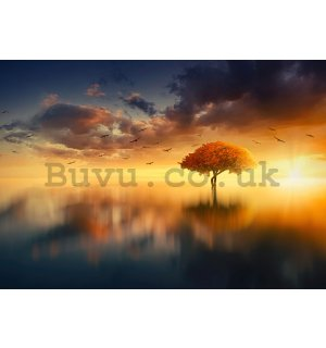 Wall mural vlies: Tree by the lake (2) - 184x254 cm