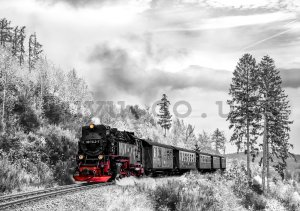 Wall mural vlies: Steam locomotive (2) - 184x254 cm