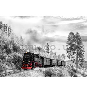 Wall mural vlies: Steam locomotive (2) - 254x368 cm