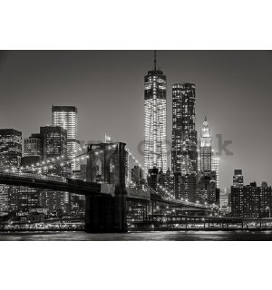 Wall mural vlies: Brooklyn Bridge (4) - 184x254 cm
