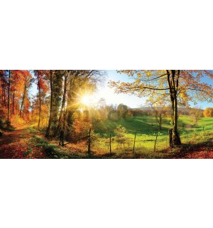 Wall mural: Magic Landscape (1) - 104x250 cm