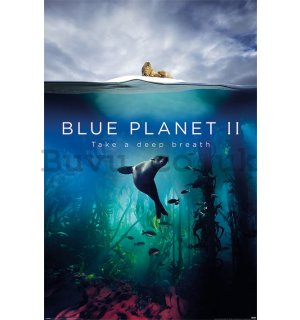 Poster - Blue Planet 2 (Take A Deep Breath)