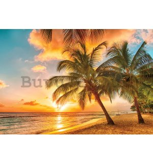 Wall Mural: Sunset in paradise - 254x368 cm
