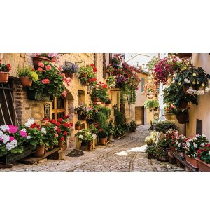 Wall mural vlies: Street with flowers - 152,5x104 cm