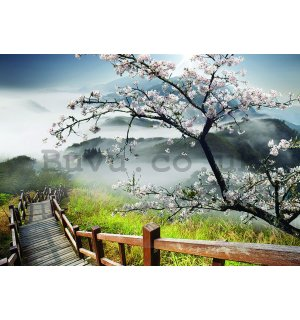 Wall mural vlies: Cherry tree above the stairs - 254x368 cm