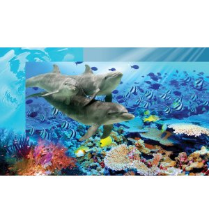 Wall mural vlies: Undersea world - 416x254 cm