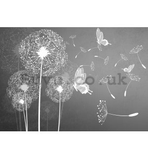 Wall mural vlies: Dandelions and butterflies - 416x254 cm