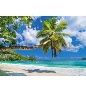 Wall mural vlies: Tropical paradise (4) - 416x254 cm