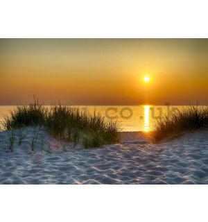Wall mural vlies: Sunset at the beach (5) - 416x254 cm