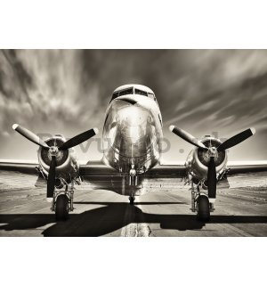 Wall mural vlies: Aircraft (black and white) - 416x254 cm