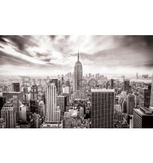 Wall mural vlies: View on New York (black and white) - 416x254 cm