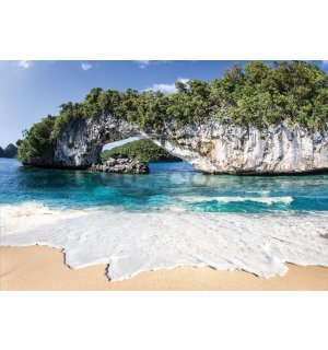 Wall mural vlies: Tropical paradise - 416x254 cm