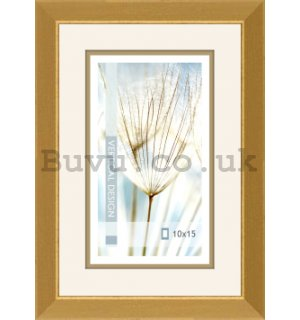 Photo frame, 1 photo, 10x15 cm (gold)