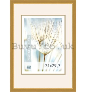 Photo frame, 1 photo, 21x29,7 cm (gold)