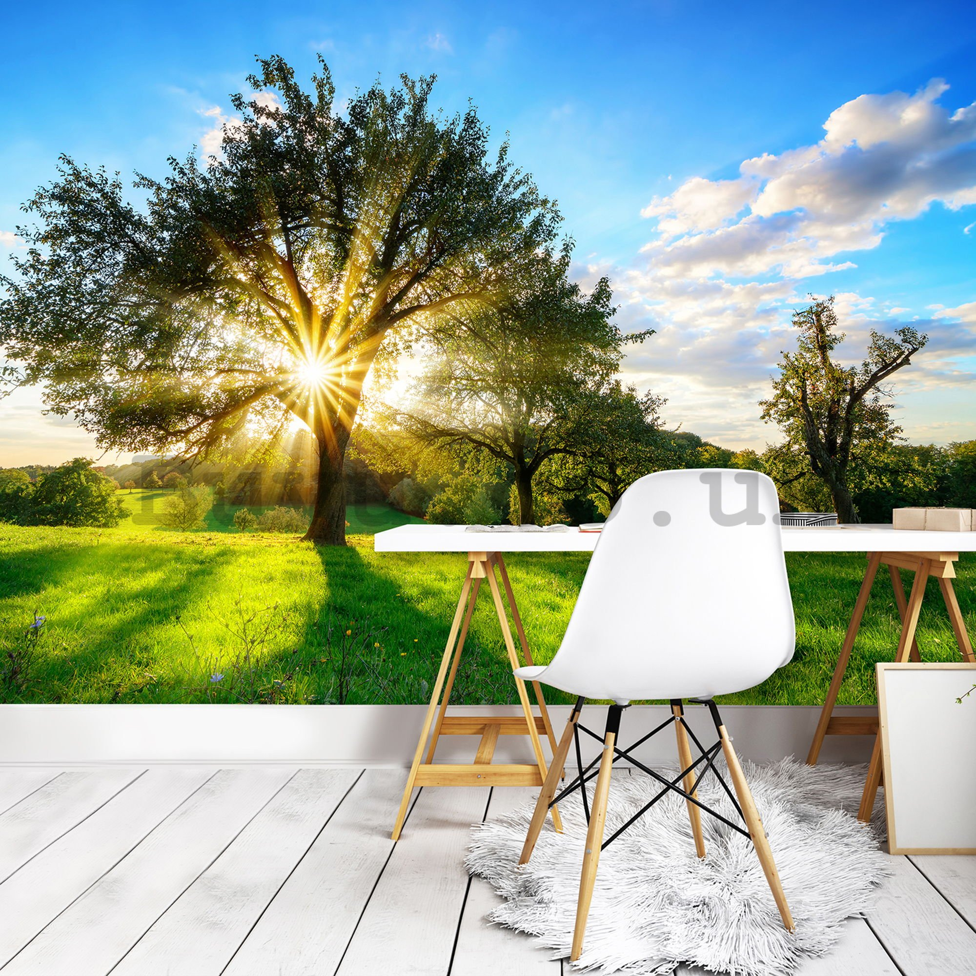 Wall mural vlies: Sun behind the tree - 254x368 cm